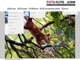 Online-Fotokurs und Foto-Kurs-Ebook zum kostenlosen Download