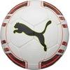 Puma evoPOWER 5 Trainer HS