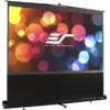 Elite Screens F100NWH