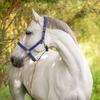 Kerbl Halfter Mustang, 2-fach verstellbar