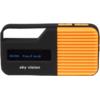 Skyvision DAB 12