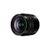 Panasonic H-X012 Lumix G Leica